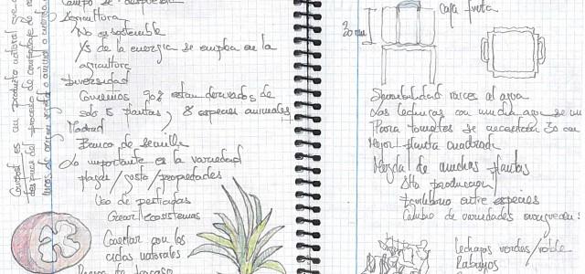 #Caseando, el prototipo de vivienda con autodispositivos ciudadanos, se instala en Matadero-Madrid durante este verano como primera itinerancia tras los […]